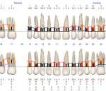 periodoncia chamartín